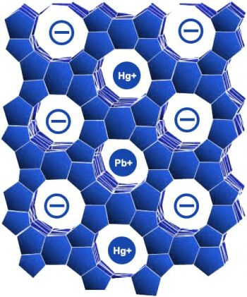 The honeycomb zeolite structure has a negative charge and hollow cages. These hollow cages are attracted to positively charged toxins like lead (Pb+) and mercury (Hg+).